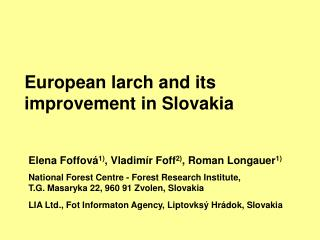 European larch and its  improvement  in Slovakia