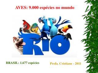 Profa. Cristiane - 2011
