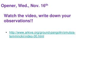 Opener, Wed., Nov. 16 th Watch the video, write down your observations!!