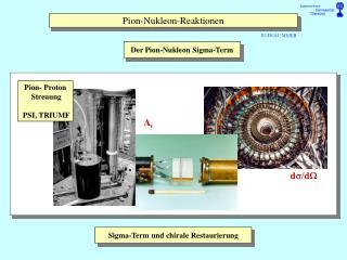 Pion-Nukleon-Reaktionen