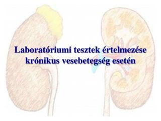 Laboratóriumi tesztek értelmezése krónikus vesebetegség esetén