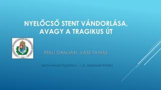 Nyelőcső  stent  vándorlása,  avagy  a tragikus  út Pekli Damjá n,  Vass  Tam ás