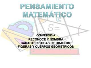 COMPETENCIA RECONOCE Y NOMBRA CARACTERISTICAS DE OBJETOS, FIGURAS Y CUERPOS GEOMETRICOS