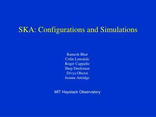 SKA: Configurations and Simulations