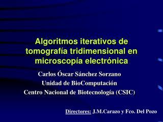 Algoritmos iterativos de tomografía tridimensional en microscopía electrónica