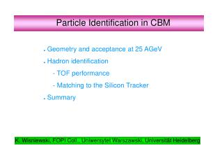 Particle  Identification in CBM