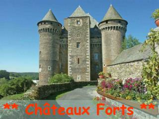 ** Châteaux Forts **