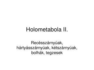 Holometabola II.
