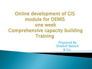 Online d evelopment of GIS module for DEMIS  one week  Comprehensive capacity building Training