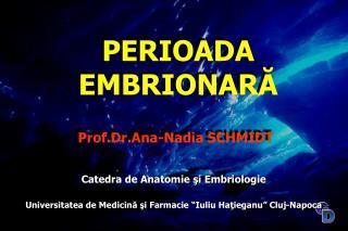 Prof.Dr.Ana - Nadia  SCHMIDT