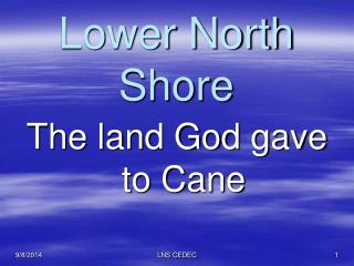 Lower North Shore