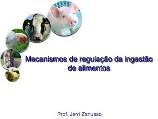 Mecanismos de regulação da ingestão de alimentos