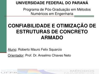 UNIVERSIDADE FEDERAL DO PARANÁ Programa de Pós-Graduação em Métodos Numéricos em Engenharia