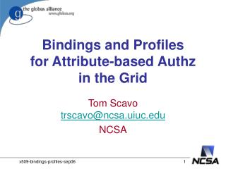 Bindings and Profiles for Attribute-based Authz in the Grid