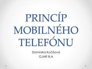 PRINCÍP MOBILNÉHO TELEFÓNU