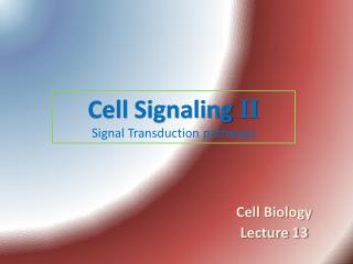 Cell  Signaling II Signal Transduction pathways