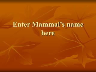 Enter Mammal's name here