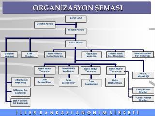 ORGANIZASYON SEMASI