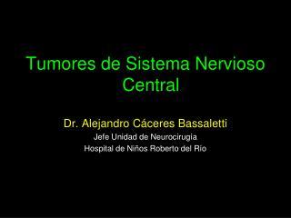Tumores de Sistema Nervioso Central  Dr. Alejandro Cáceres Bassaletti Jefe Unidad de Neurocirugía