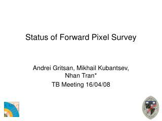 Status of Forward Pixel Survey