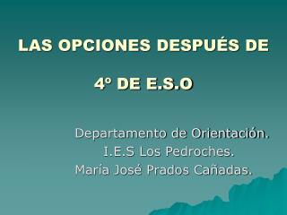 LAS OPCIONES DESPU�S DE  4� DE E.S.O