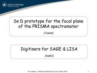 Se - D prototype for the focal plane  of the PRISMA spectrometer (Task4)