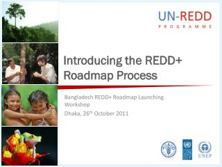 Introducing the REDD+ Roadmap Process