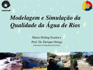 Modelagem e Simula  o da Qualidade da  gua de Rios