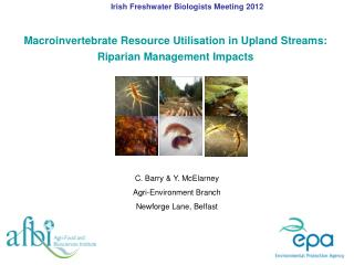 Macroinvertebrate Resource Utilisation in Upland Streams:  Riparian Management Impacts