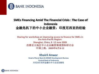 SMEs Financing Amid The Financial Crisis : The Case of Indonesia 金融危机下的中小企业融资:印度尼西亚的经验