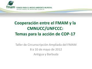 Cooperación entre el FMAM y la CMNUCC/UNFCCC: Temas para la acción de COP-17