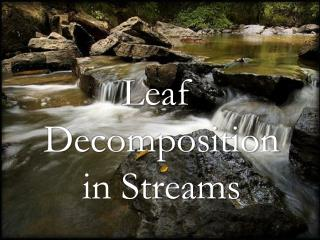 Leaf Decomposition in Streams