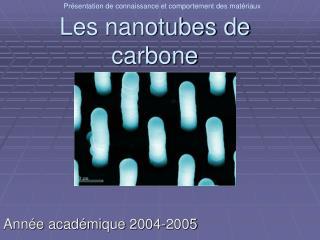 Les nanotubes de carbone