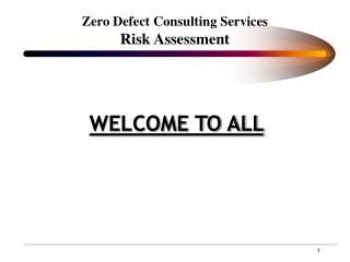 Zero Defect Consulting Services Risk Assessment