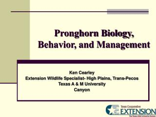 Pronghorn Biology, Behavior, and Management