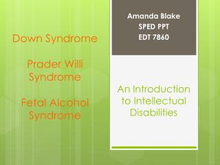 An Introduction to Intellectual Disabilities