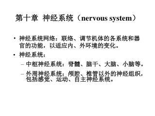 第十章  神经系统( nervous system )