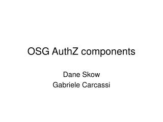 OSG AuthZ components