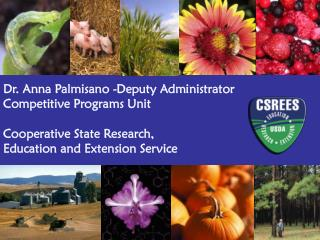 Dr. Anna Palmisano -Deputy Administrator Competitive Programs Unit Cooperative State Research,