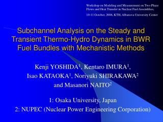 Subchannel Analysis on the Steady and Transient Thermo-Hydro Dynamics in BWR Fuel Bundles with Mechanistic Methods