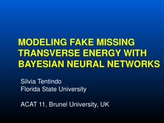 Modeling Fake Missing Transverse Energy with Bayesian Neural  NetwoRkS