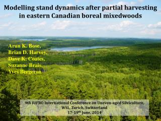 Modelling stand dynamics after partial harvesting in eastern Canadian boreal  mixedwoods