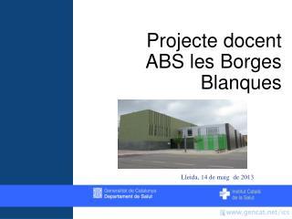 Projecte docent  ABS les Borges Blanques
