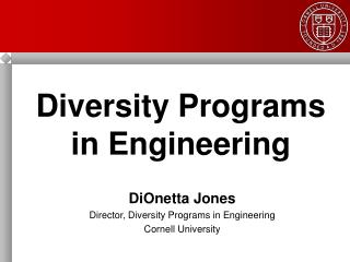 Diversity Programs  in Engineering