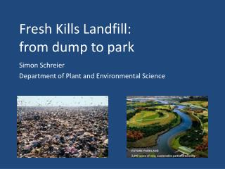 Fresh Kills Landfill:  from dump to park