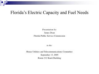Florida's Electric Capacity and Fuel Needs