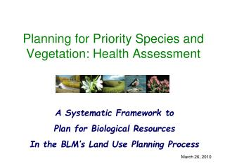 Planning for Priority Species and Vegetation: Health Assessment