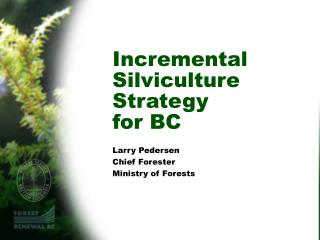 Incremental Silviculture Strategy  for BC