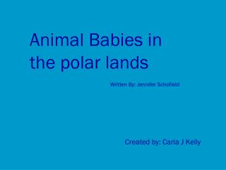 Animal Babies in    the polar lands