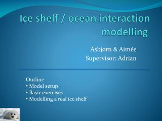Ice shelf / ocean interaction  modelling